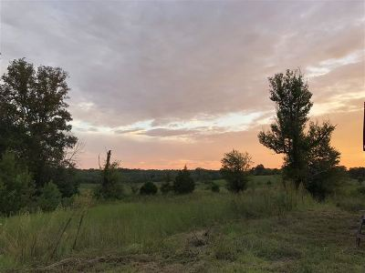 Etowah Residential Lots & Land For Sale: 422 Co Rd 782 #Tract 2