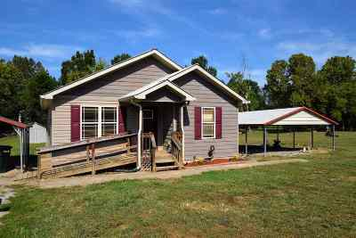 Spring City Single Family Home For Sale: 217 Creek View Drive