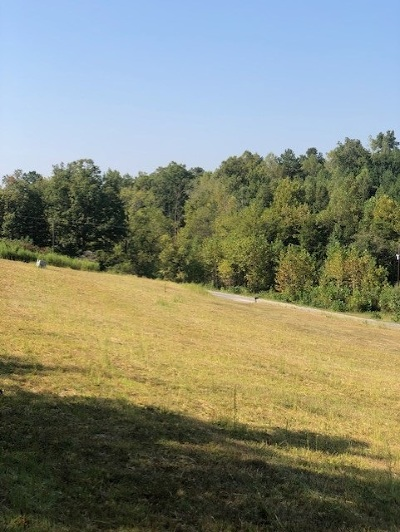 Athens Residential Lots & Land For Sale: County Road 83