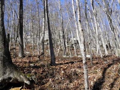 Coalmont Residential Lots & Land For Sale: 258 Cathedral Canyon Dr.