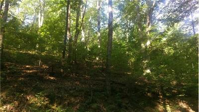 Residential Lots & Land For Sale: Burned House Rd