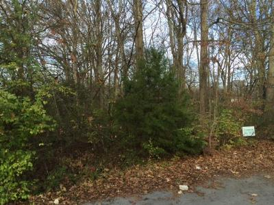 Madison Residential Lots & Land For Sale: 513 Yale Ave