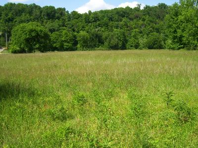 Linden Residential Lots & Land For Sale: Big Buffalo Ests Cir