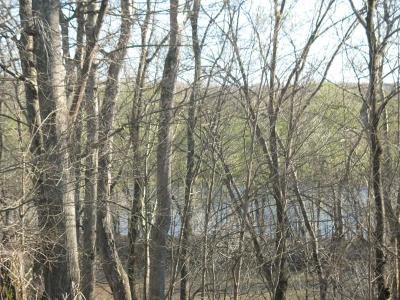 Adams, Clarksville, Springfield, Dover Residential Lots & Land For Sale: Patricia Cir