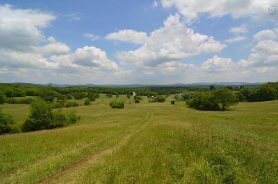 Wilson County Residential Lots & Land For Sale: 3025 Chicken Rd