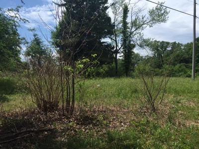 Residential Lots & Land For Sale: 179 Wells St