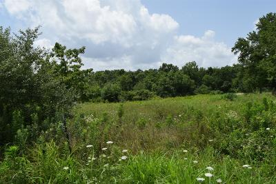 Residential Lots & Land For Sale: 514 Scenic North Rd