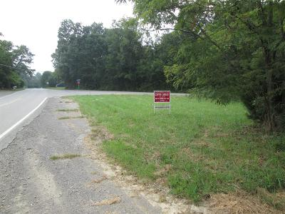 Adams, Clarksville, Springfield, Dover Commercial For Sale: 675 Palmyra Rd