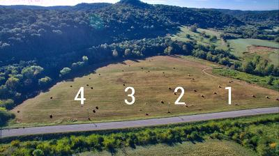 Auburntown TN Residential Lots & Land For Sale: $69,900