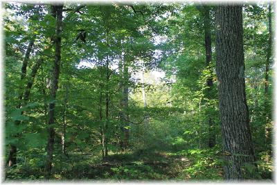 Pegram Residential Lots & Land For Sale: Sams Creek