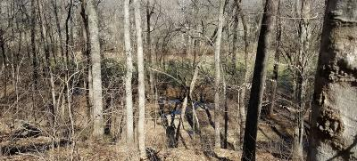 Clarksville Residential Lots & Land For Sale: 2981 Surrey Ridge Rd