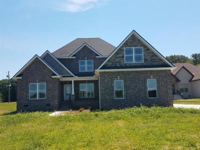 Rockvale Single Family Home For Sale: 6991 Hwy 99 (Lot 3)