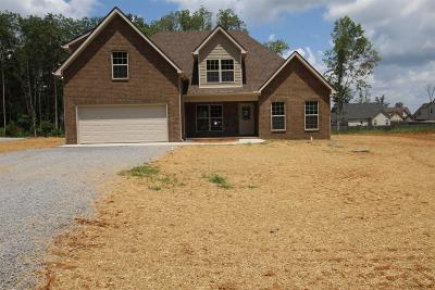 Christiana Single Family Home For Sale: 546 Long Creek Dr (Lot 205)