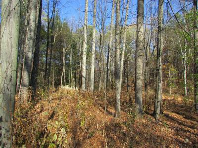 Gruetli Laager Residential Lots & Land Under Contract - Showing: Ross Creek Rd