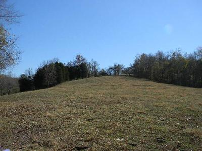 Tennessee Ridge Residential Lots & Land For Sale: 330 Cliff Ln