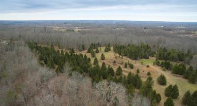 Residential Lots & Land For Sale: Coon Creek Road