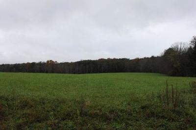 Palmer Residential Lots & Land For Sale: 100 State Route 399