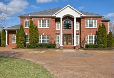 Brentwood  Single Family Home For Sale: 230 Pelham Dr