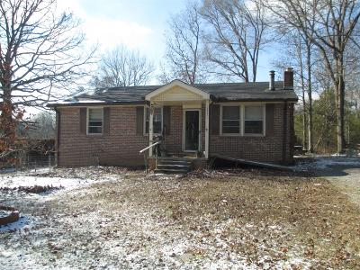 Mount Juliet Single Family Home For Sale: 13890 Central Pike