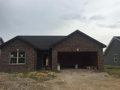 Christian County, Ky, Todd County, Ky, Montgomery County Single Family Home Under Contract - Showing: 484 Ridgeland Estates