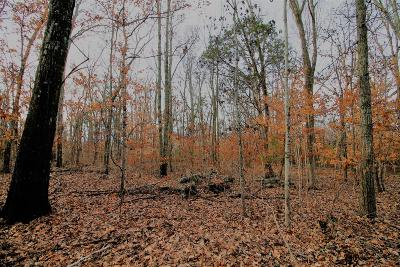 Brentwood Residential Lots & Land For Sale: 9913 Maupin Rd