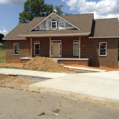 Pleasant View Single Family Home For Sale: 875 Dixie Lane