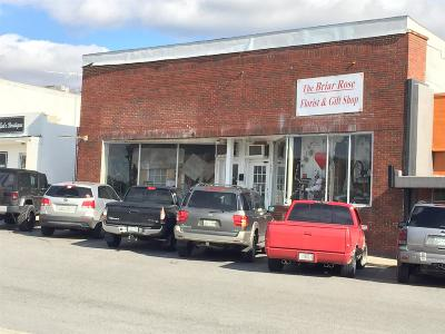 Woodbury TN Commercial For Sale: $130,000