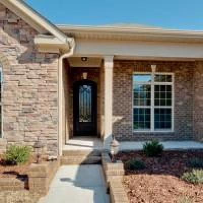 Spring Hill  Single Family Home Under Contract - Not Showing: 8005 Brightwater Way