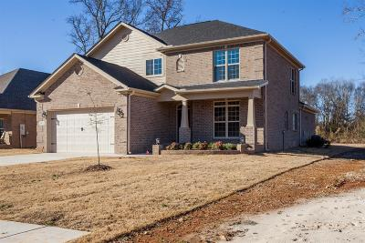 Spring Hill Single Family Home For Sale: 8003 Brightwater Way
