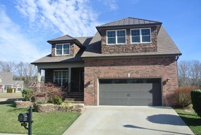 Clarksville Single Family Home For Sale: 519 Summit View Circle