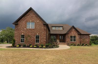 Mount Juliet Single Family Home For Sale: 828 Harrisburg Lane