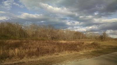 Centerville Residential Lots & Land For Sale: 584 Highway 100