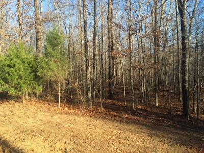 Residential Lots & Land For Sale: 163 Winterberry Dr