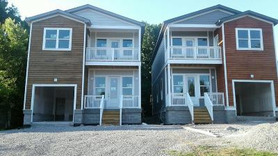 Nashville Single Family Home For Sale: 316 Pioneer Ln