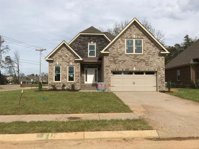 Spring Hill  Single Family Home For Sale: 9001 Wheeler Drive - Lot 664