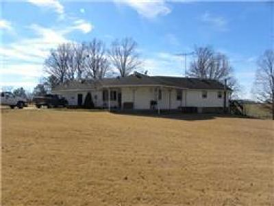 Hohenwald Single Family Home For Sale: 1731 Summertown Hwy