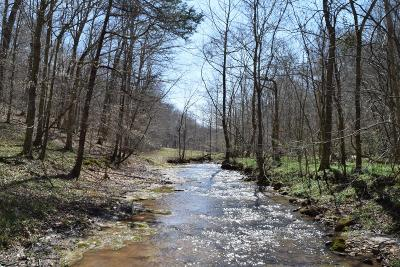 Christian County, Ky, Todd County, Ky, Montgomery County Residential Lots & Land For Sale: 3822 Vernon Creek Rd