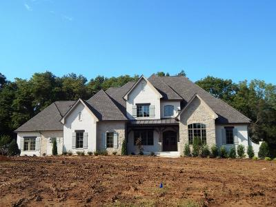 Thompsons Station Single Family Home For Sale: 3304 Bridle Path Ct, Lot 204