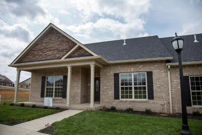Christian County, Ky, Todd County, Ky, Montgomery County Condo/Townhouse For Sale: 456 Pond Apple Rd Unit 46 #46