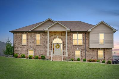 Clarksville Single Family Home For Sale: 3390 Cotham Lane