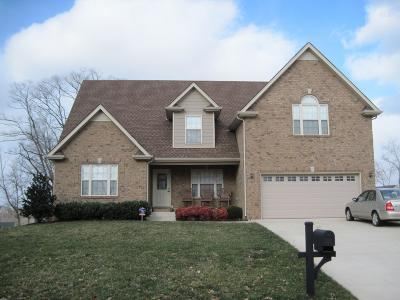 Clarksville Single Family Home For Sale: 495 Winding Bluff Way