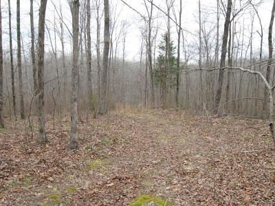 Lobelville Residential Lots & Land For Sale: 11 Journey Hollow Rd