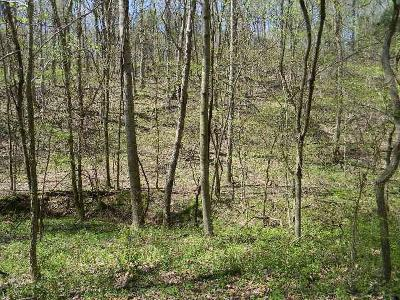 Erin Residential Lots & Land For Sale: Highway 149