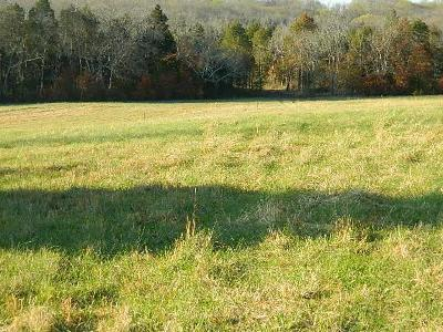Spring Hill  Residential Lots & Land For Sale: Ollie Chunn