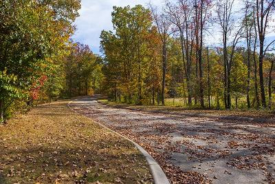 Bon Aqua, Burns, Charlotte, Cumberland Furnace, Dickson, Lyles, Vanleer, White Bluff Residential Lots & Land For Sale: 1099 Meadowood