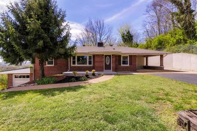 Mount Pleasant Single Family Home Under Contract - Showing: 713 Washington Ave