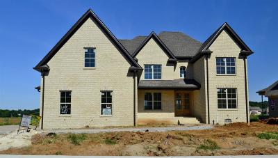 Spring Hill Single Family Home Under Contract - Showing: 2022 Autumn Ridge Way (267)