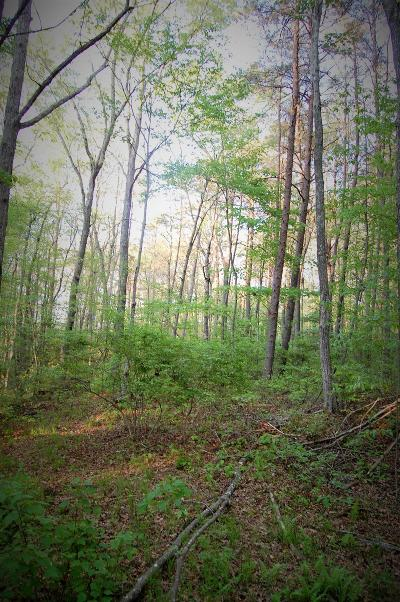 Coalmont Residential Lots & Land For Sale: Stage Coach Rd