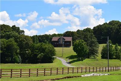 Centerville Residential Lots & Land For Sale: 451 Backside Beaverdam Rd