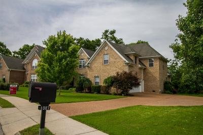 Spring Hill Single Family Home For Sale: 1087 Auldridge Dr